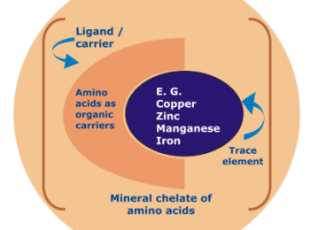 Chelate Minerals