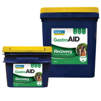 GastroAID Recovery