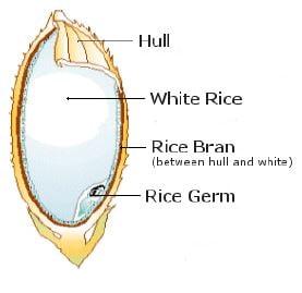 Rice Bran Hull