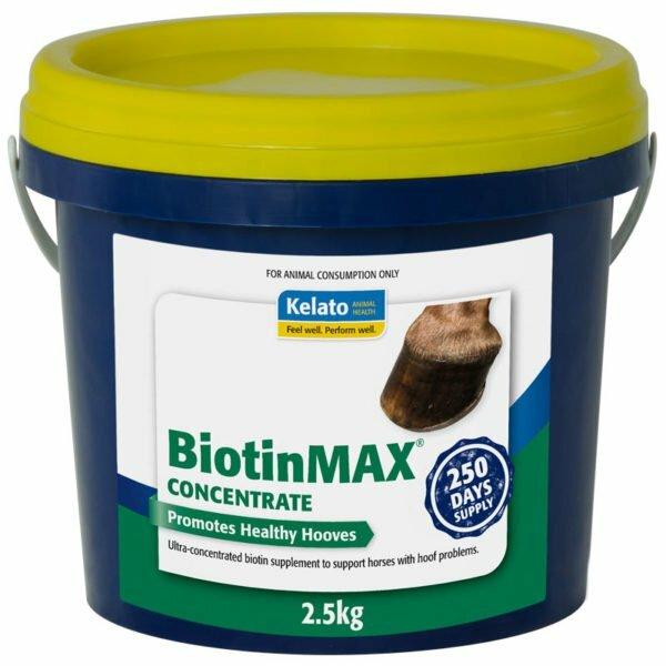 BiotinMAX